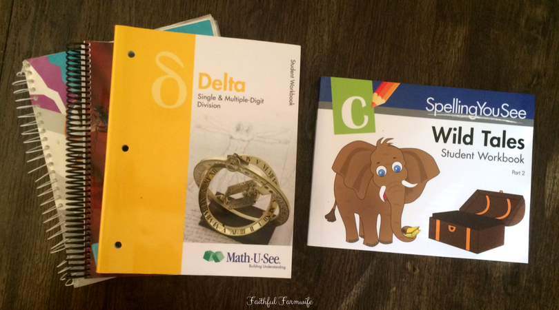 Our 3rd Grade Homeschool Curriculum