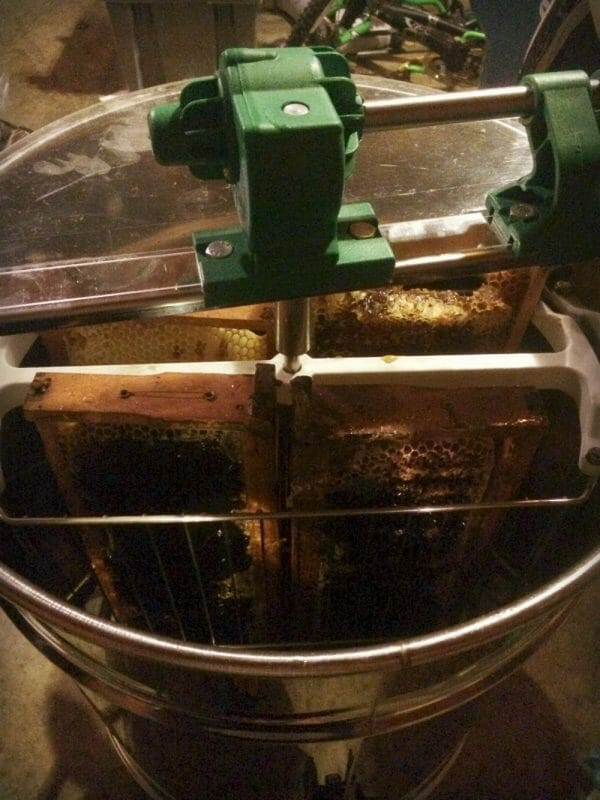 Spinning Honey | How to Extract Honey With a Hand-Crank Extractor | Faithful Farmwife