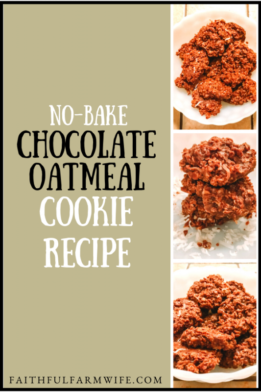 """This No-Bake Chocolate Oatmeal Cookie recipe is very simple to make, super yummy to eat, and most of the ingredients are already in your pantry! You can also serve them up as """"Wookie Cookies"""" to Star Wars fans! #NoBakeCookie #CookieRecipe #ChocolateOatmealCookie #WookieCookie #StarWarsCookie"""