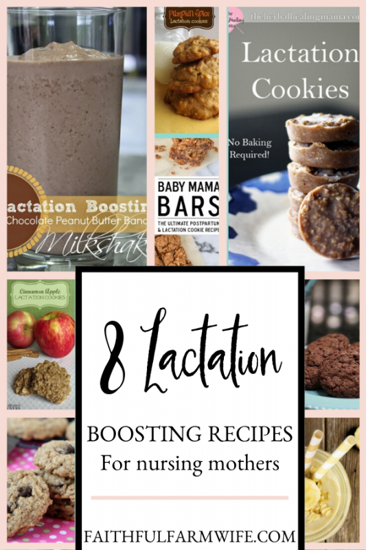 Are you a breastfeeding mom? Check out these Yummy Lactation recipes to increase your supply! #Breastfeeding #Lactation #NursingMom
