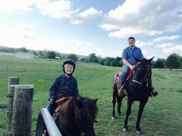 The Horses- 2016 Recap
