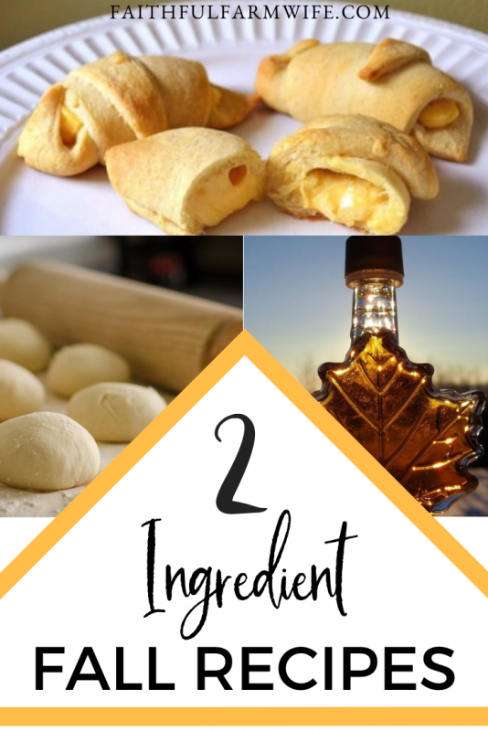 It's fall, y'all! I am so ready for bon fires, hoodies, and yummy fall food that is super simple to prepare. Give these 2 ingredient fall recipes a try! #fallrecipes