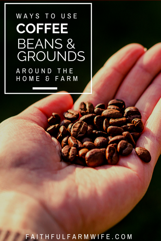 Do you have coffee beans that are too old to grind in your morning cup? Are you wondering if there is a way to reuse the coffee grounds that you typically toss in the trash? Checkout this list of 13 coffee bean uses for the home & farm + ways to reuse coffee grounds! #coffee #reuse #repurpose #coffeebeans #reusecoffee