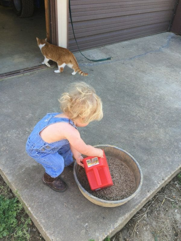 Start Chores at a Young Age