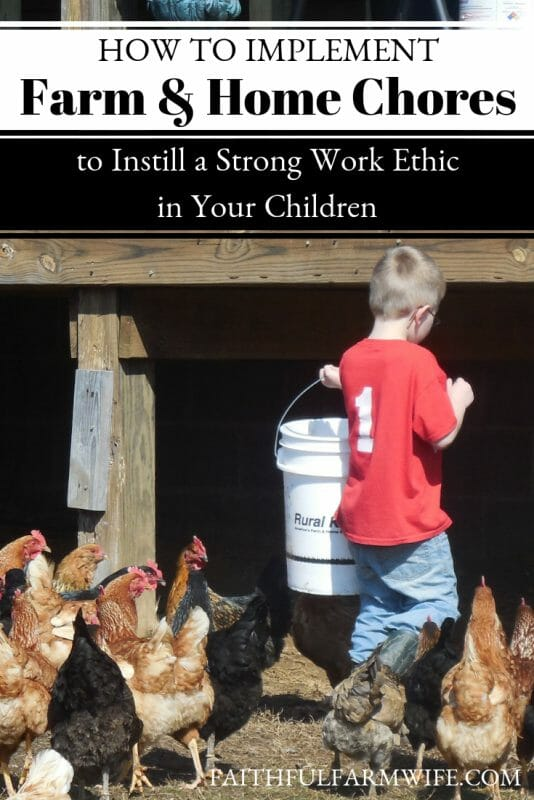 Wondering how you can go about assigning and enforcing kids' chores around your farm &home in a way that will instill a strong work ethic instead of burning them out? Check out these 9 Tips! #kidschores #farmchores #householdchores #responsibility