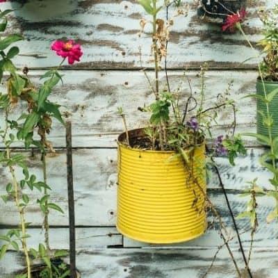 DIY Repurposed Planting Containers