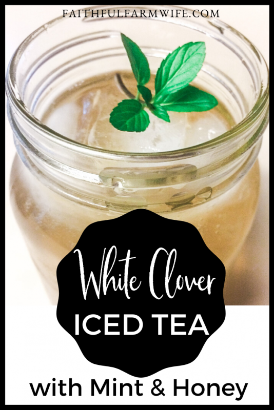 Add a twist to your summertime sweet tea with this white clover iced tea! #summertime #icedtea #whiteclover #foraging