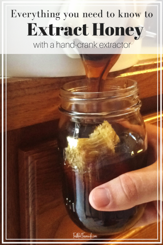 Interested in beekeeping or just love eating honey? Check out this complete guide that will teach you to extract honey at home using a hand-crank extractor! #beekeeping #extracthoney #rawhoney #eatlocal