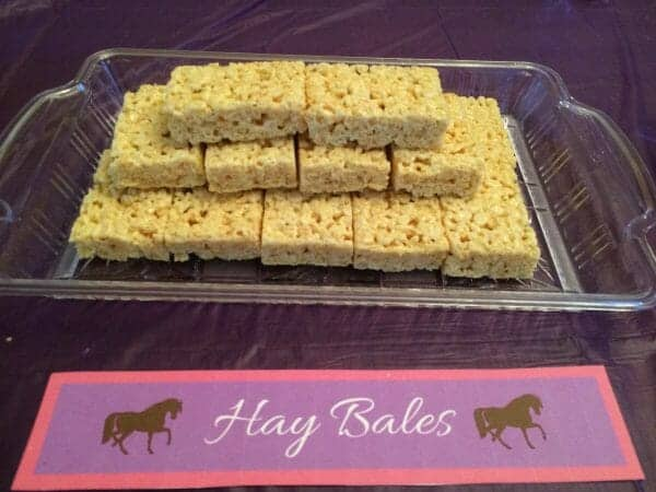 Does your little horse lover have a birthday coming up? Try these ideas for activities, food, and decorations for a special horse birthday party!