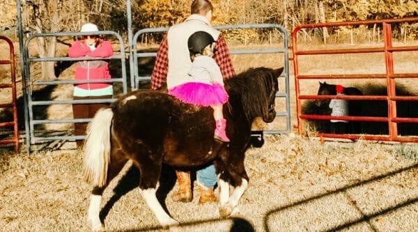 Horse Birthday Party Activities, Food, & Decorations | Faithful Farmwife