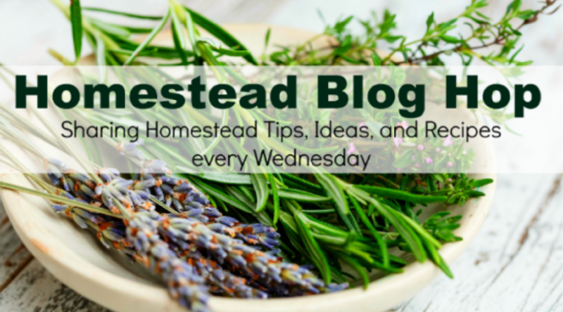 Homestead Blog Hop #183