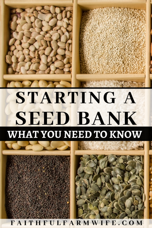 Whether you are preparing for the long-term future or just for the next season, you need to start a seed bank for your family. Find out what you need to know to make your own this year! Plus download seed label printables for your seed packs! #seedbank #seedsaving #garden