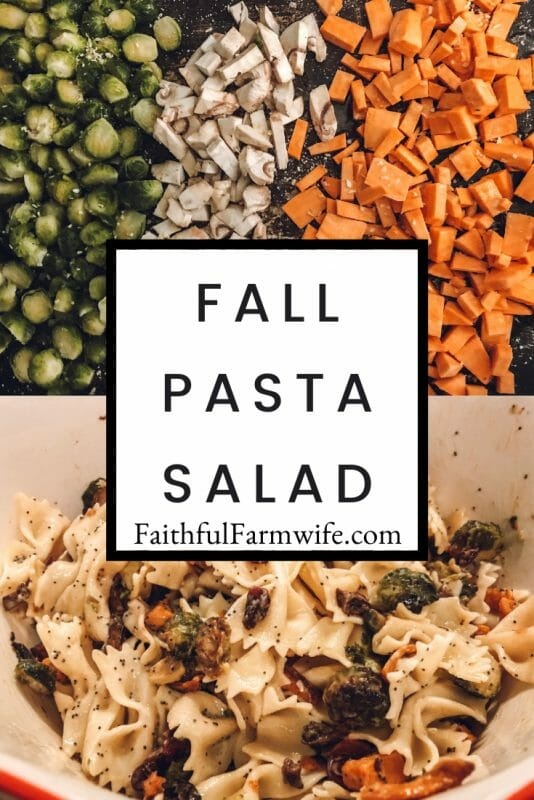 Looking for a pasta salad with a little seasonal flair? Try out this Fall Pasta Salad with hearty veggies and a homemade poppyseed dressing! #FallFood #PastaSalad #FallPastaSalad