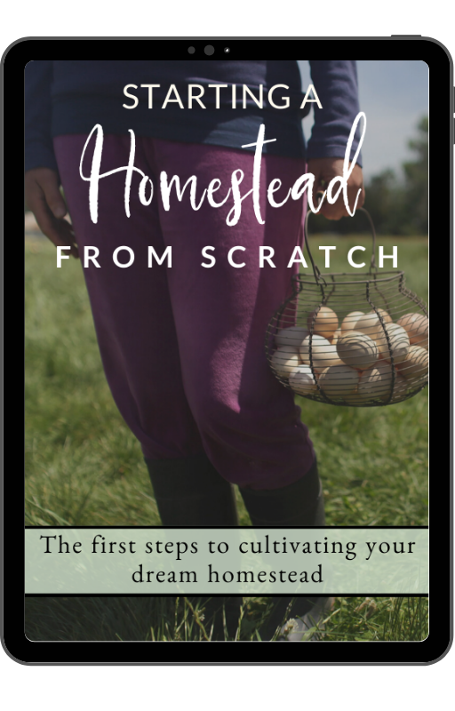 Starting a Homestead From Scratch Ebook | 5 Questions to Ask Before Starting a Homestead | Faithful Farmwife