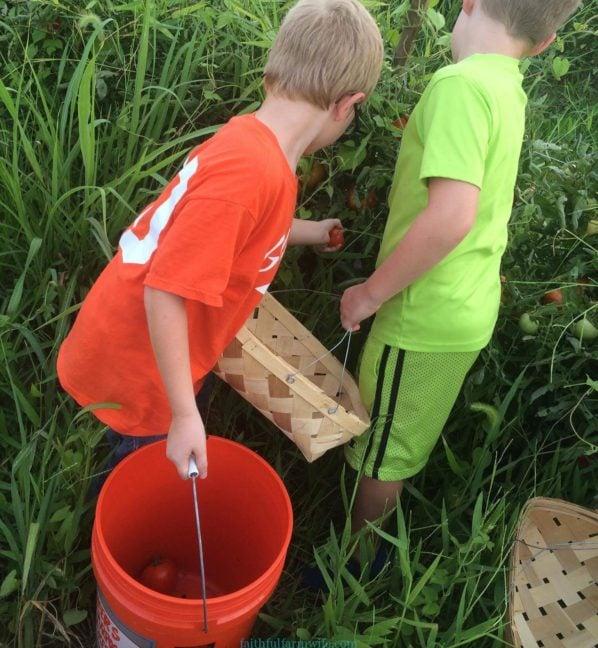 10 Ways to Serve With Your Children-Glean