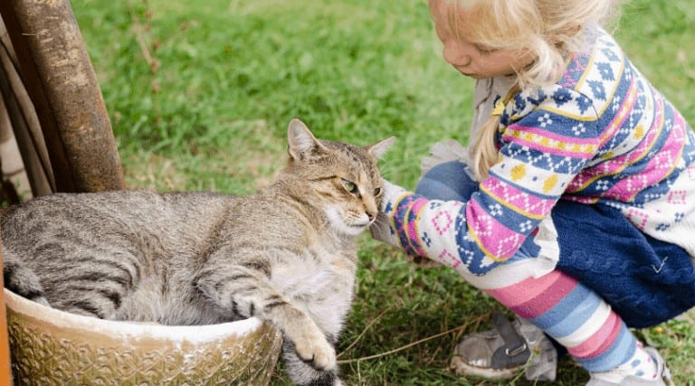 5 Weird Ways Toddlers Act Like Cats