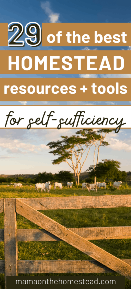 29 of the best homestead resources + tools for self-sufficiency pin