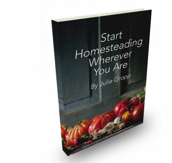 29 Best Homesteading Resources | Start Homesteading Wherever You Are | Faithful Farmwife