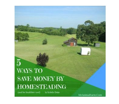 29 Best Homesteading Resources | 5 Ways to Save Money By Homesteading  | Faithful Farmwife