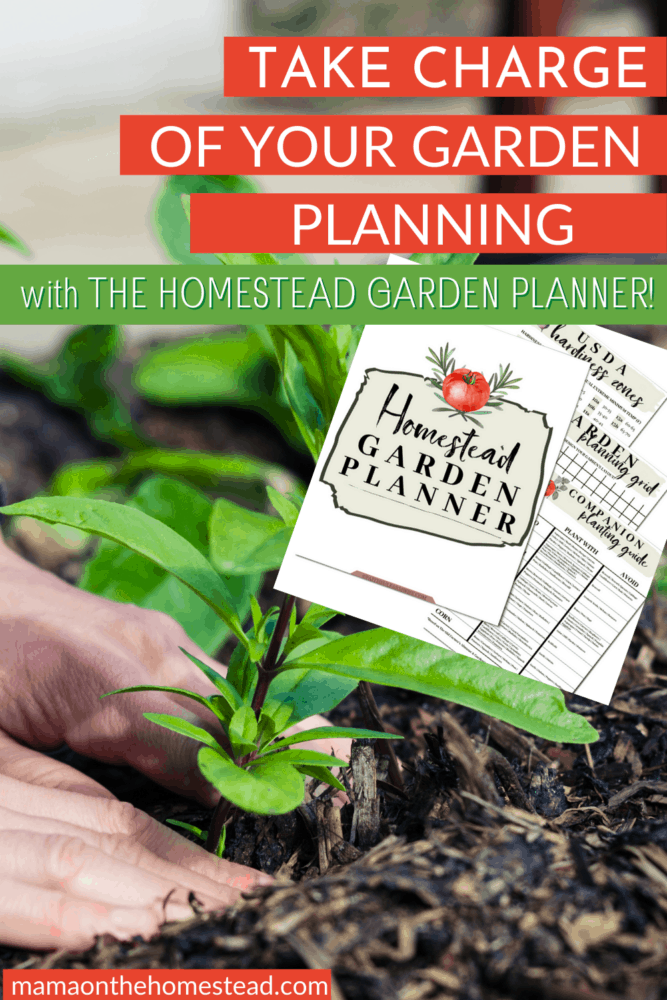 Pin Image of a person placing a transplant into the soil. Words: Take Charge of Your Garden Planning with The Homestead Garden Planner!