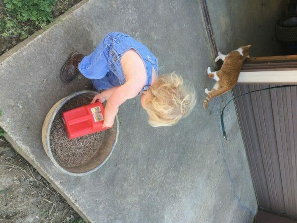 Girl feeding horses | 9 Simple Tips for Implementing Farm Chores for Kids | Faithful Farmwife