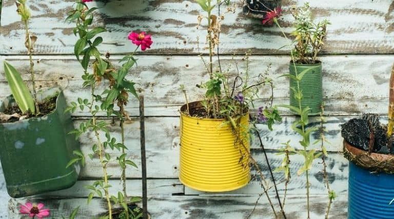 How to Make DIY Planting Containers by Repurposing Household Items