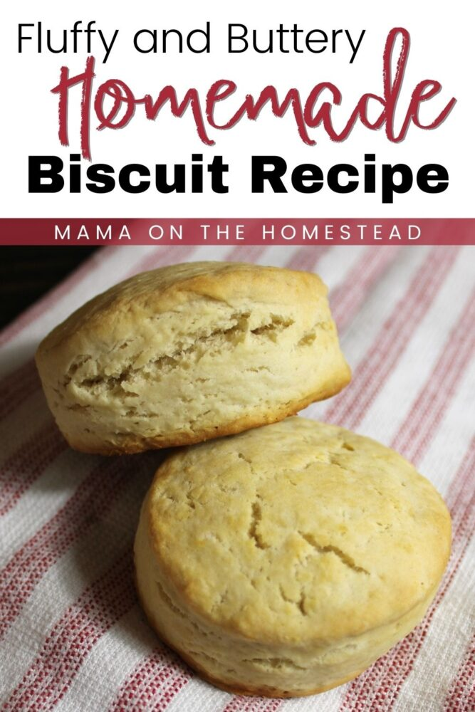 Homemade Fluffy Biscuit Recipe   Mama on the Homestead