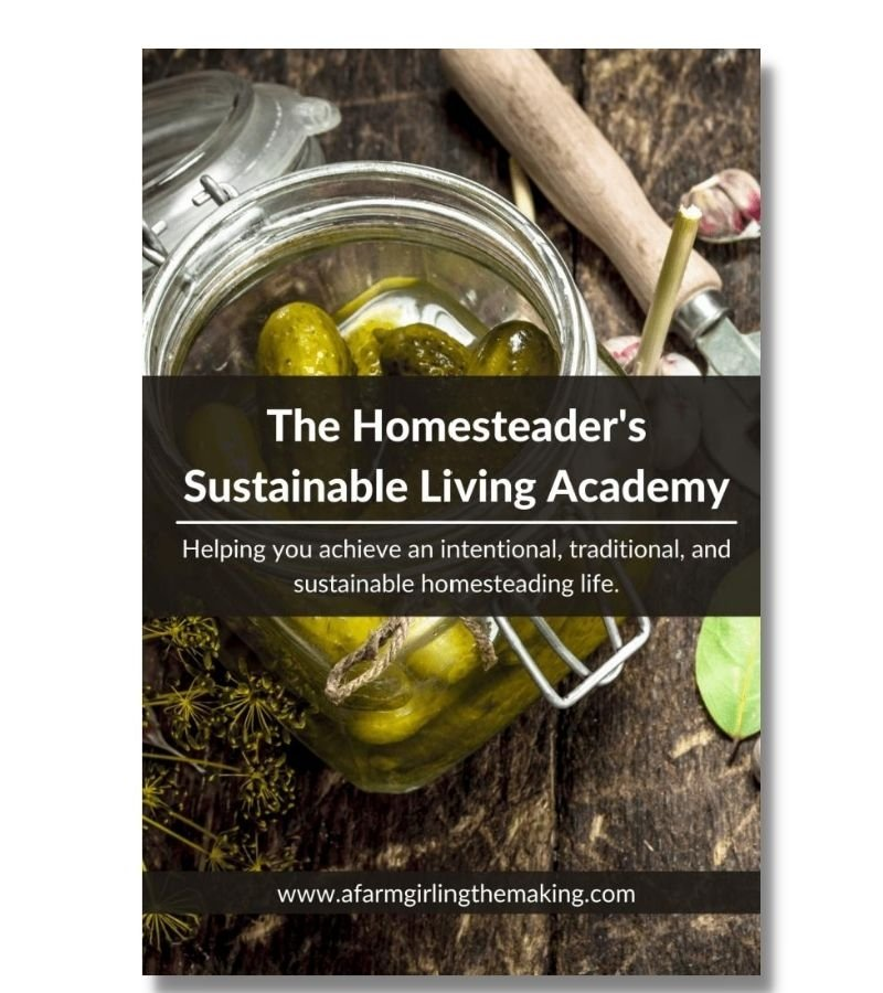 Image of The Homesteader's Sustainable Living Academy | Helping you achieve an intentional, traditional, and sustainable homesteading life
