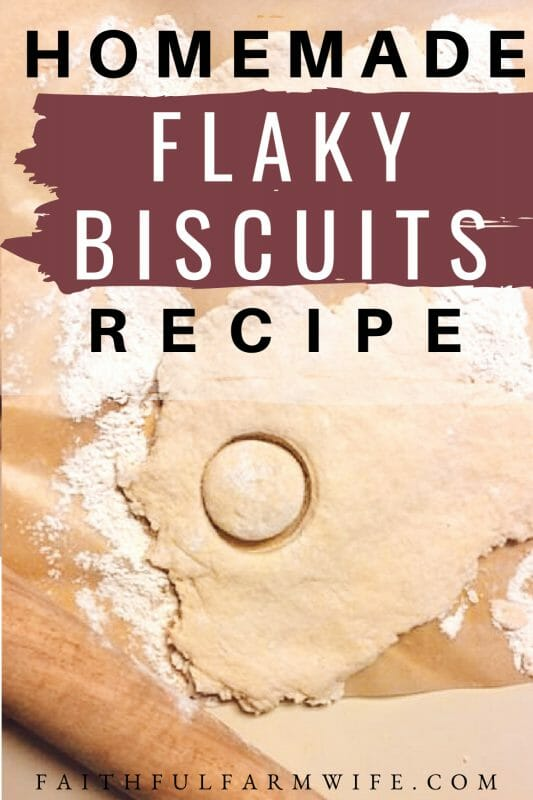 Making flaky biscuits from scratch sounds time consuming and messy, but this recipe only calls for 6 ingredients and 20-25 minutes of your time! #biscuitrecipe #homemadebiscuits #homemade #fromscratch #breakfast