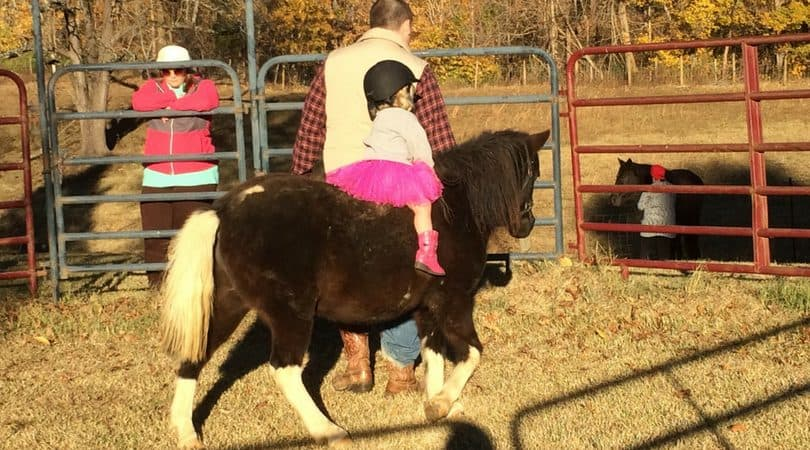 14+ Horse Birthday Party Ideas for Your Little Cowgirl