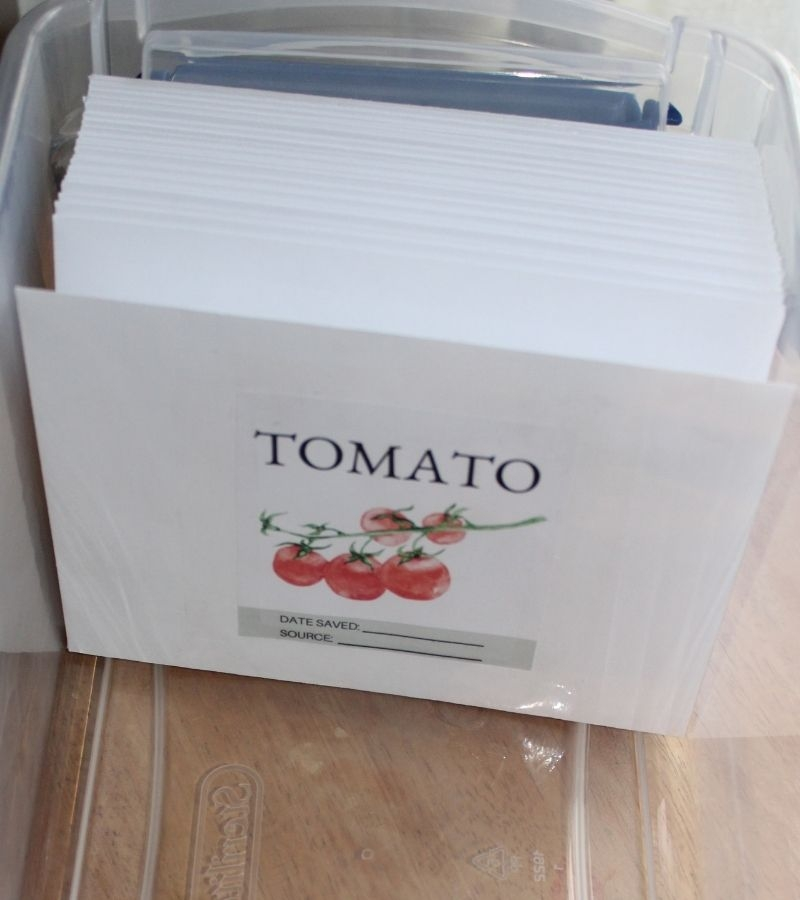 Image of envelopes with seed pack labels taped on. Tomato label is in front. | Mama on the Homestead
