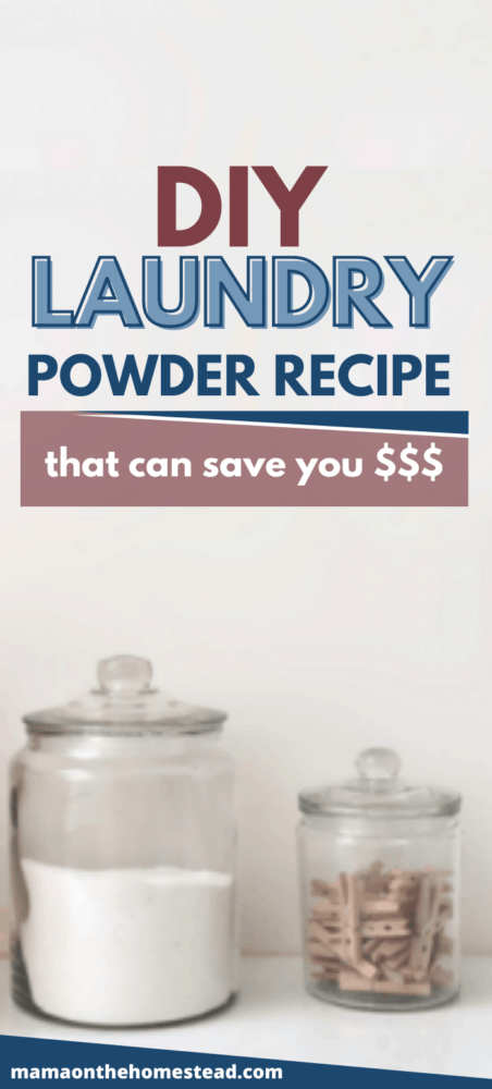 DIY Laundry Powder Recipe that Can Save You Money Pin