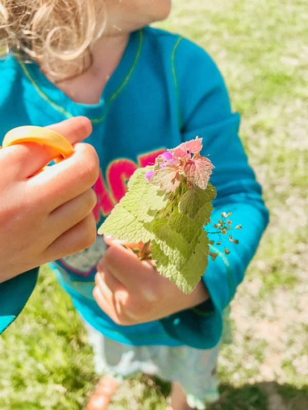 19+ Outdoor Summer Family Activities | Faithful Farmwife