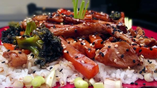 Teriyaki Chicken with Rice and Veggies on Red Plate | 24 Best Easy Freezer Meals for Stress-Free Dinners | Faithful Farmwife