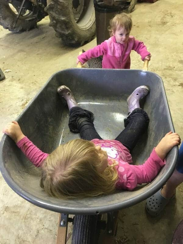 Girls playing in wheelbarrow | 70+ Practical Homesteading Essentials You Need for Self-Sufficiency | Faithful Farmwife