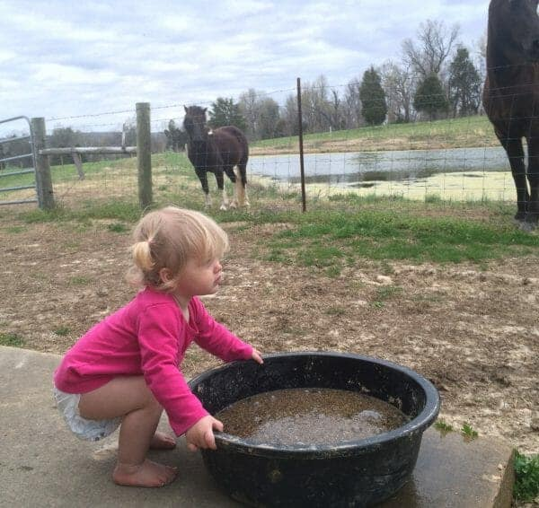 Girl Feeding Horses | 70+ Practical Homesteading Essentials You Need for Self-Sufficiency | Faithful Farmwife