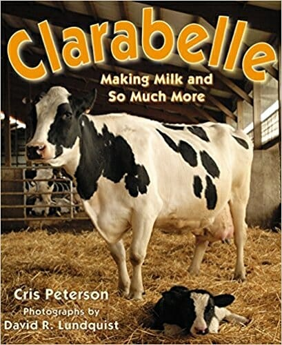 Clarabelle | 15 Best Children's Dairy Animal Books