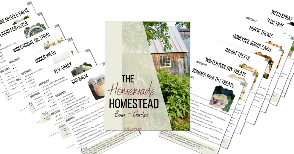 The Homemade Homestead: Barn + Garden Products | All Natural Homemade Bag Balm with Essential Oils | Faithful Farmwife