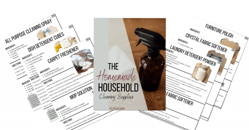 The Homemade Household: Cleaning Supplies