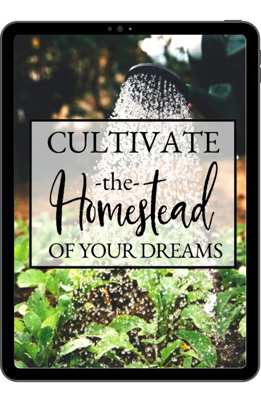 Cultivate the Homestead of Your Dreams | 5 Questions to Ask Before Starting a Homestead | Faithful Farmwife