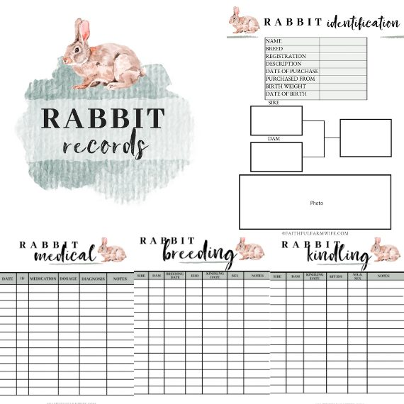 The Rabbit Record Book | Mama on the Homestead