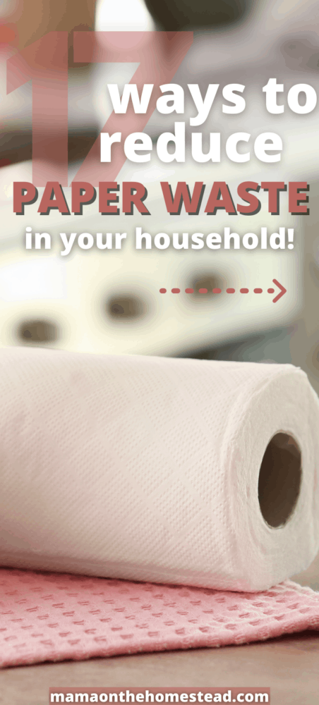 Image of paper towels on counter. Words: 17 Ways to reduce paper waste in your household. Pin Image