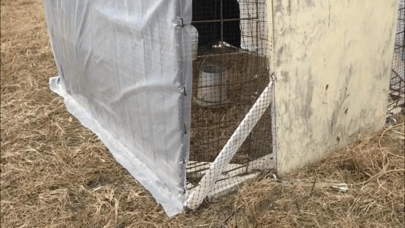 Cut Excess Plastic Off  | Faithful Farmwife