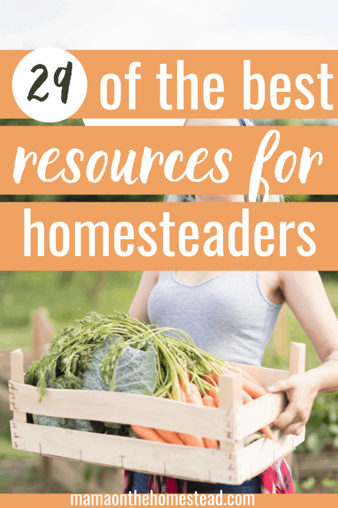 29 of the best resources for homesteaders pin