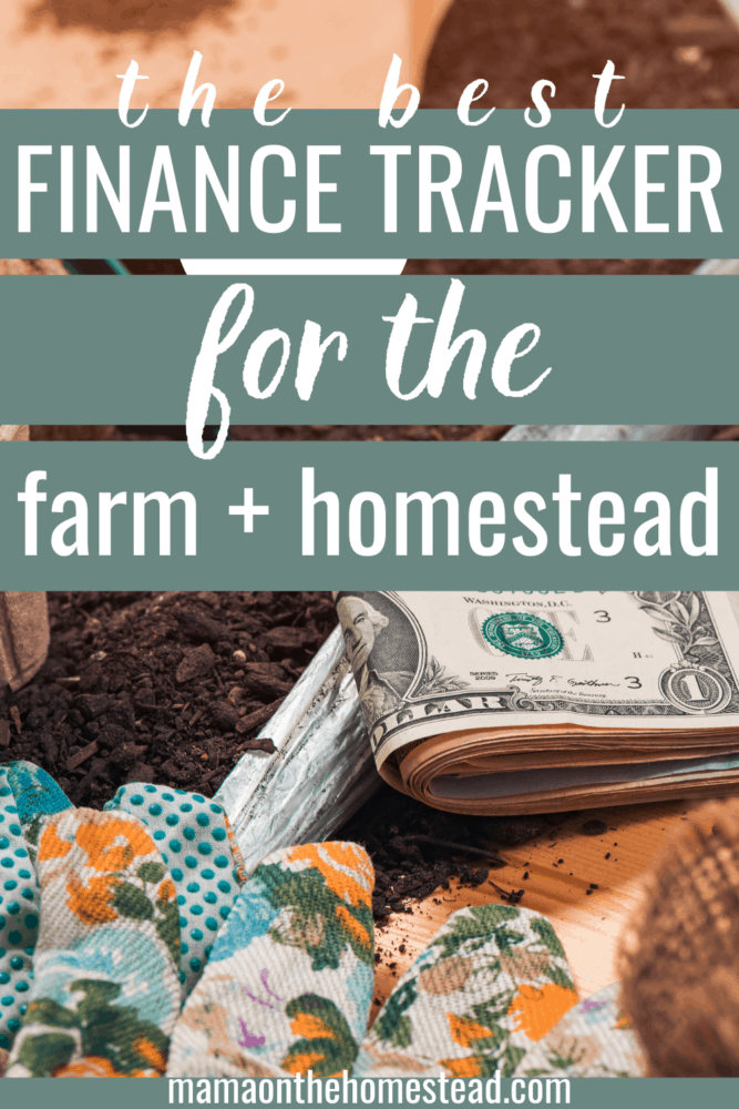 Image of cash in a garden. Words: The Best Finance Tracker for the Farm + Homestead. Pin Image