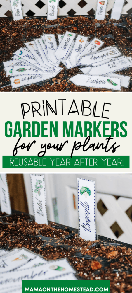 Two images of laminated garden markers in a seed starting tray. Pin Image