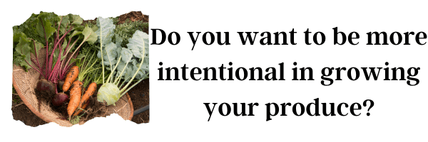Do you want to be more intentional in growing your produce?