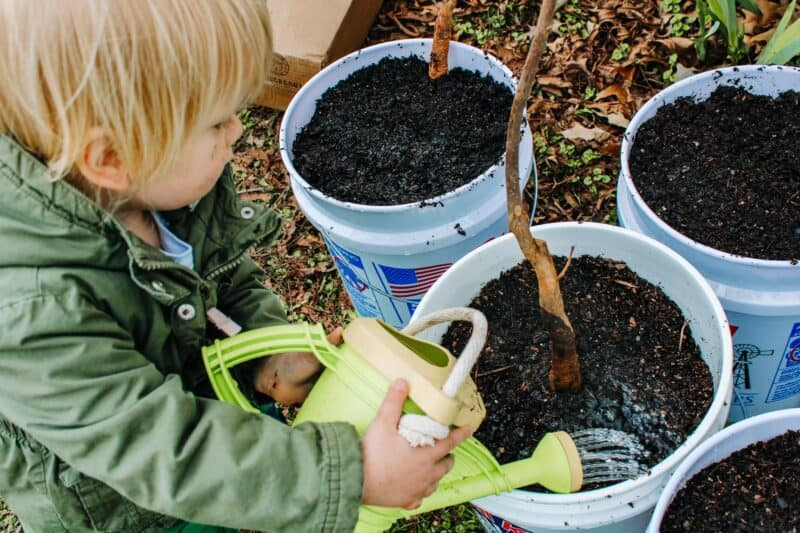 boy watering plants with a green and yellow watering can | Kids Garden Tools