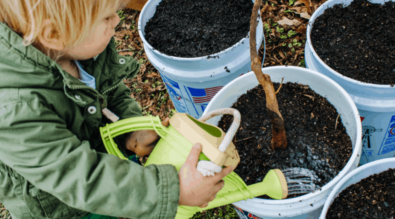 Image of young boy watering plants in a bucket. Tips for Gardening with Kids | Mama on the Homestead