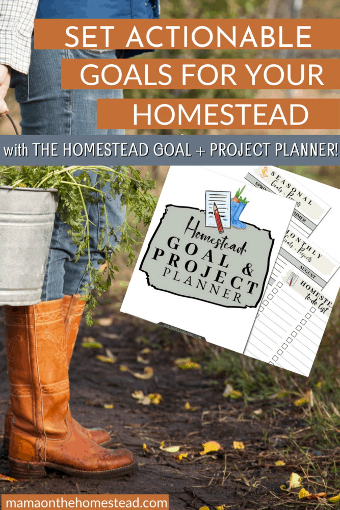 Image of woman with boots and jeans on walking with a metal buckets with greens in it. Words: Set Actionable Goals for Your Homestead with The Homestead Goal + Project Planner